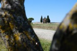 Val-d_Orcia-12_